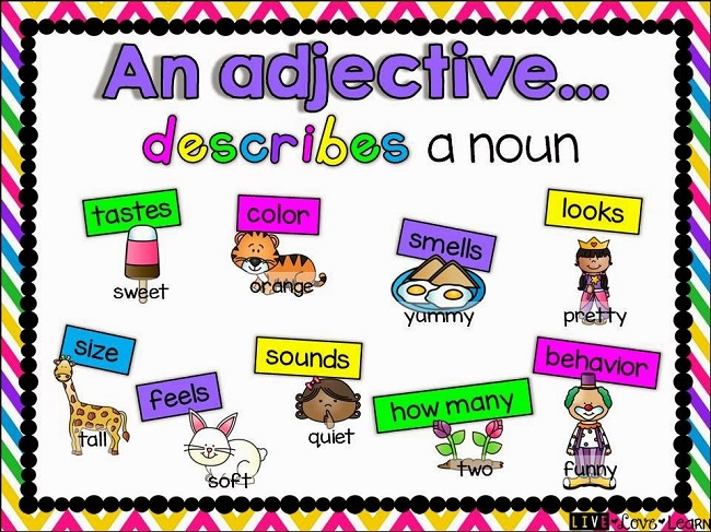 What are Adjectives? & Types of Adjectives